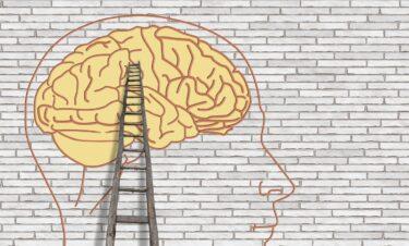 脳科学はチョムスキー理論を証明できる? – 酒井邦嘉『言語の脳科学』(2002)