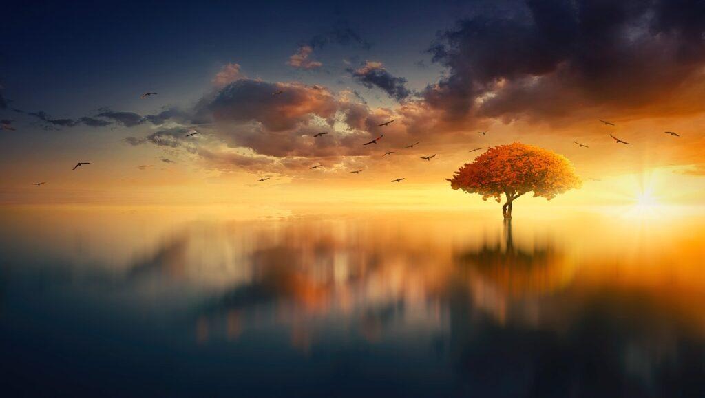 夕日と水面